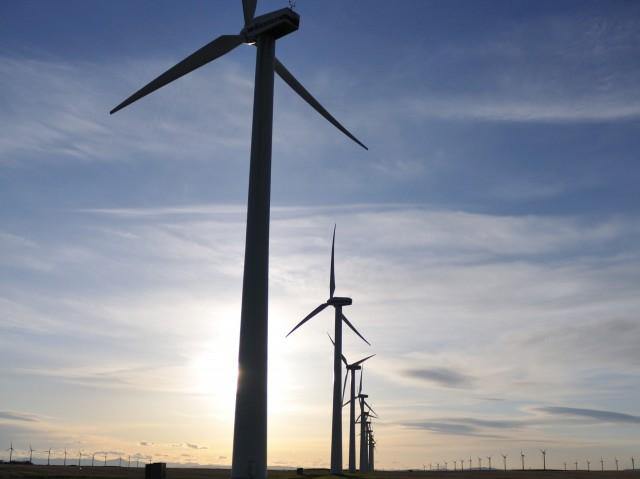 Wind farm uden for Fort MacLeod, Alberta, Canada [fotograf: Joel Bennett]